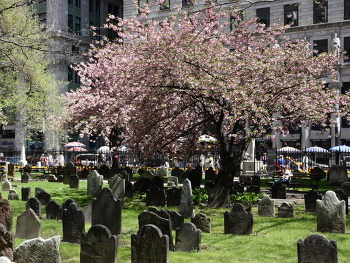 The northside of Trinity Churchyard. This was once the place of the second Dutch cemetery of New-Amsterdam